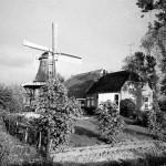 Molen De Zwaluw en boerderij fam v Dijk eind 80er jaren